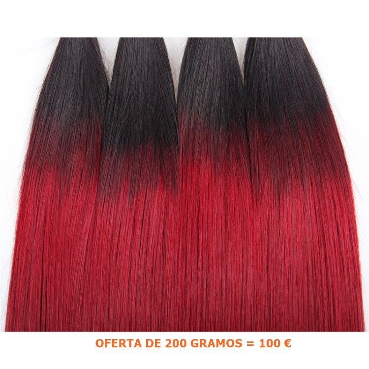 extensiones de cabello 2 tonos chantal hair CHANTALHAIR