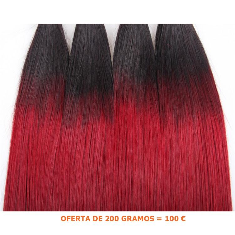 extensiones de cabello 2 tonos chantal hair CHANTALHAIR