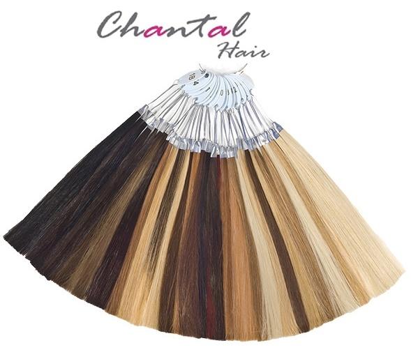 MUESTRARIO DE COLORES DE PELO NATURAL - Ring Color Chantal Hair